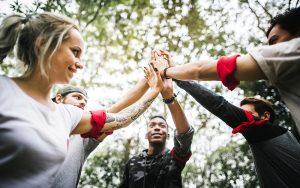 Interprofessional Collaboration Strategies